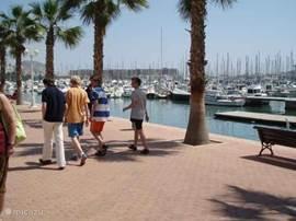 In Alicante vindt u bij de haven diverse restaurants, bars, bios en casino. De winkels in de stad zijn tot tien uur 's-avonds open, dus ook hier is het altijd een gezellige drukte. Tijdens de siesta is het lekker om even te luieren op de esplanada met de mooie mozaieken vloer. Ook het strand is hier