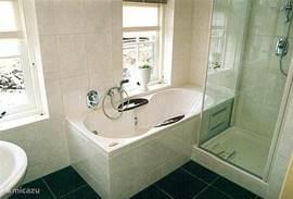 Badkamer begane grond met wastafel, whirlpool, aparte douche, wasmachine en wasdroger.