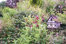 De Tuin met het vogelhuisje.