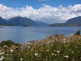 Summer Panguipulli near the village of flowers