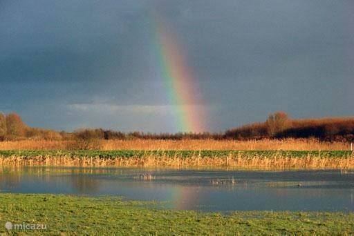 Natuurgebied Nationaal park Lauwersmeer