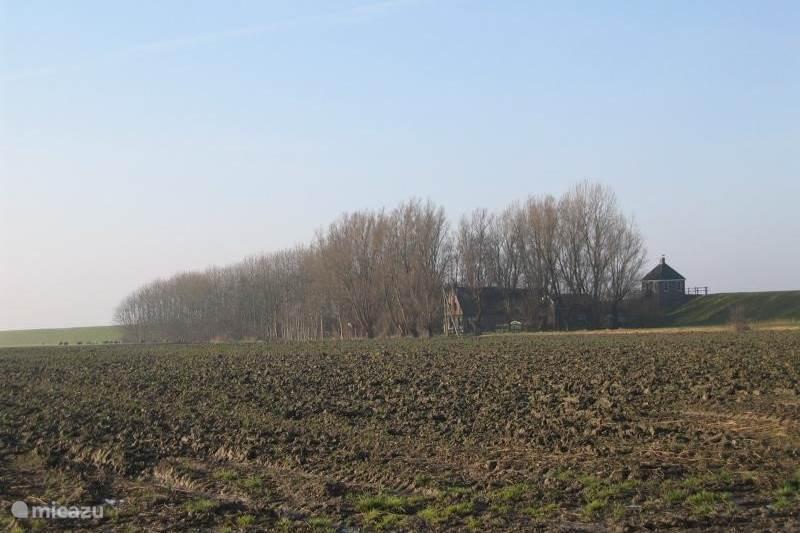 Vakantiehuis Nederland, Friesland, Kollumerpomp Boerderij Vakantieboerderij Rintjeshoek