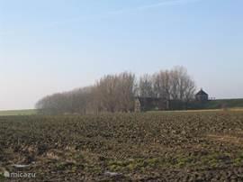 Vakantieboerderij Rintjeshoek vanuit de verte, vanaf de verharde weg gezien.