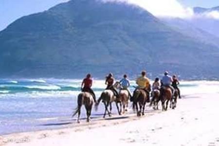 Paardrijden op het strand van Noordhoek