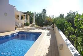 Het naast het huis gelegen zwembad is vrij nieuw en in tegenstelling tot de wat oudere zwembaden beschikt ons bad over licht zout water i.p.v. het akelige chloor.