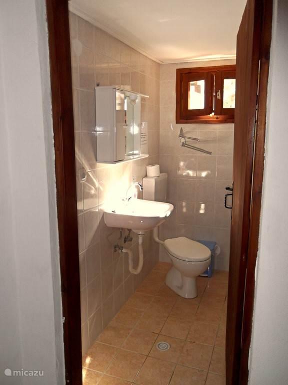 De badkamer met wastafel, toilet, douche en wasmachine.