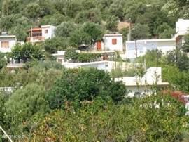 Villa Helios in het midden, verscholen onder een pergola met druiven.