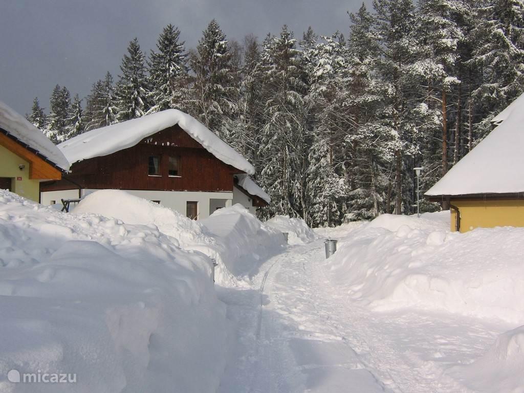 The front of property Villa Lipno.