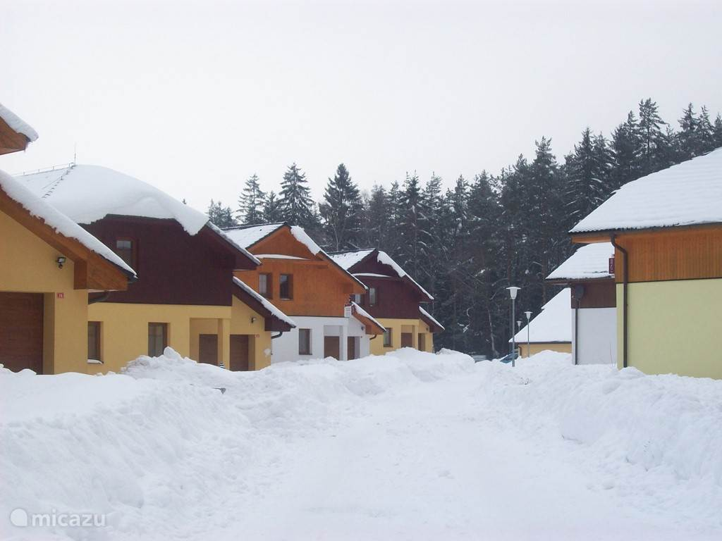 Villa Park Lipno in winter.