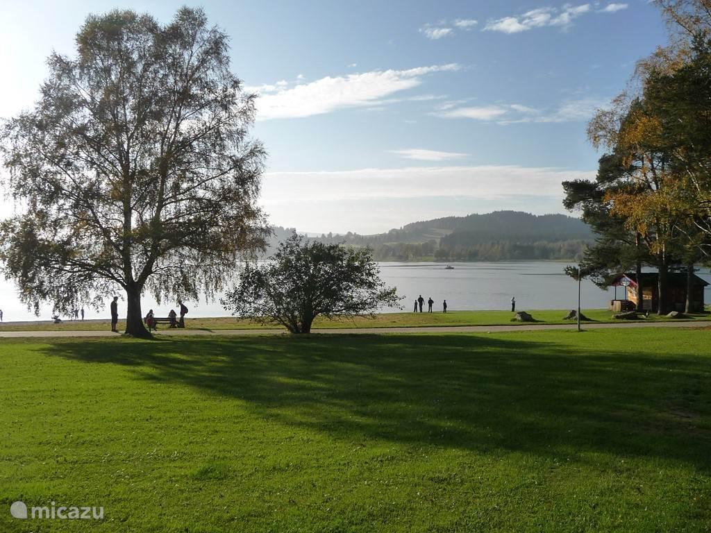 Views of Lake Lipno.