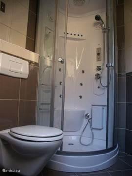 Badkamer (slaapkamer 2) met luxe relax jet/stoom/douche/cabine