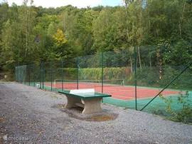 Onze alle weater tennisbaan word het gehele jaar intensief gebruikt door alle eigenaren en huurders. Wil je een balletje slaan reserveer de baan dan even om teleurstellingen te voorkomen.