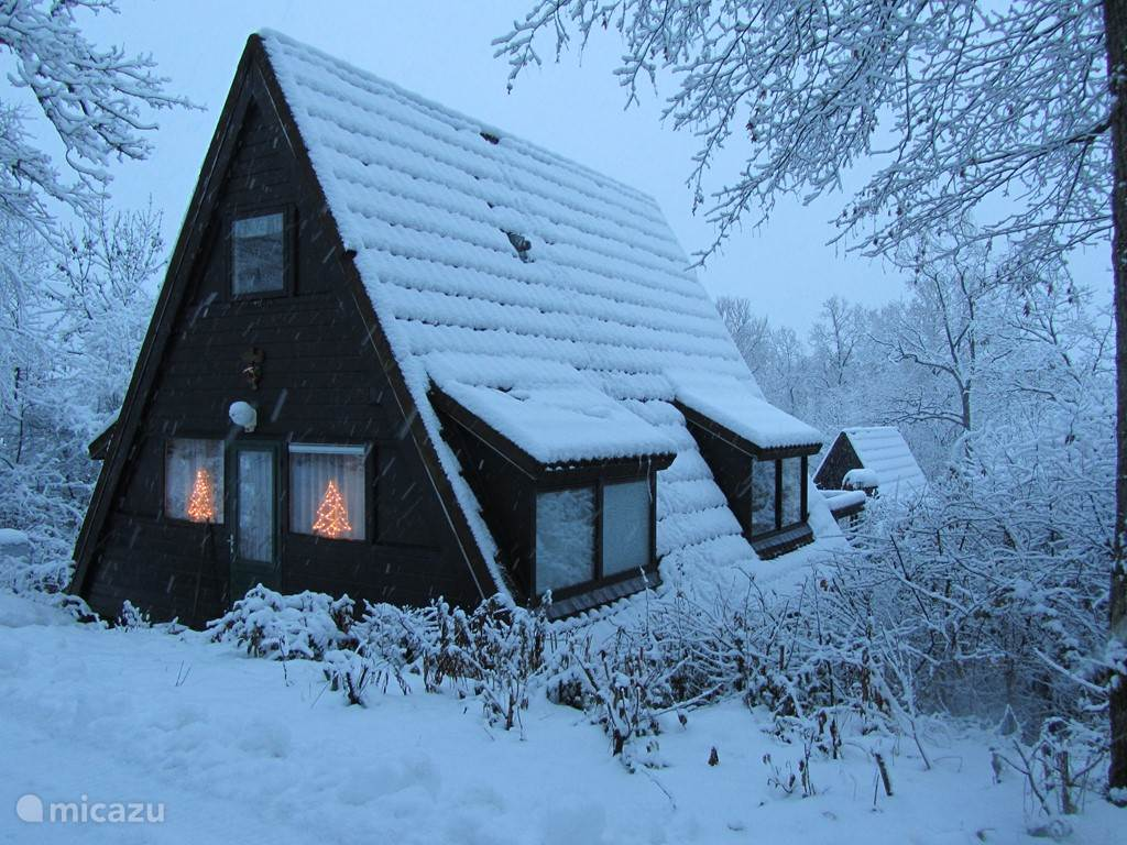 de bungalow in winters landschap