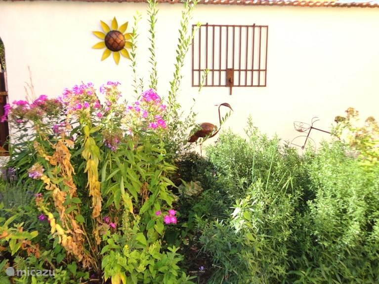 Zij-tuin met bloemen en deco's