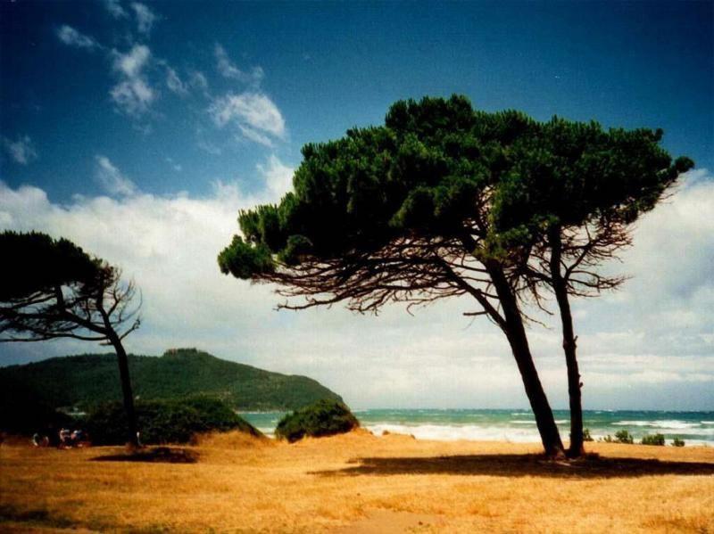 Toscane voor een budget: April/Mei/Juni v.a.300 Euro..... natuurlijke hete bronnen/spa Casciana Terme. Alle 7 cultuursteden 30-60 min. Geen wachtrijen