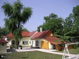 achter de woning ligt een grote tuin met voornamelijk grasveld en tevens toegang naar het buurhuis.
