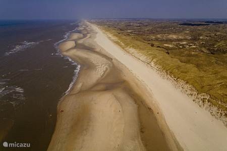 The North Holland Dune Reserve
