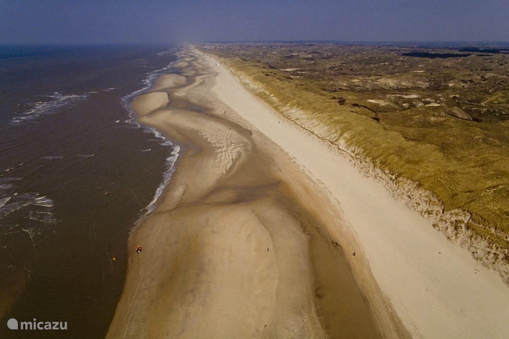 Het prachtige Noordhollands Duinreservaat