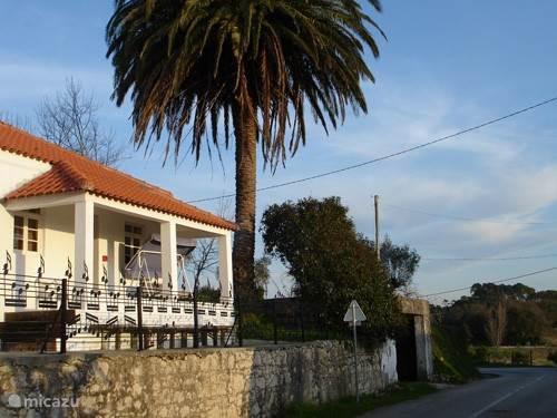 Vakantiehuis Portugal, Costa de Prata, Fugeira Da Foz - bungalow Termas da Azenha Palmeira