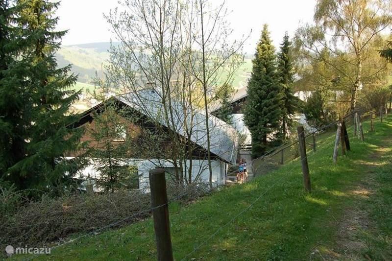 Vakantiehuis Duitsland, Sauerland, Willingen Appartement Haus Bergzicht