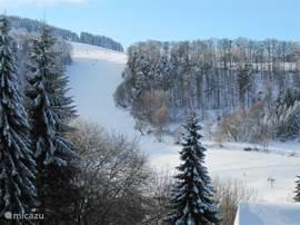 Het uitzicht vanuit de woning in de winter: de piste van Schwalefeld, gezien vanuit het appartement. Een paar kilometer verder, in Willingen zijn er nog veel meer pistes. Deze zijn ook kunstmatig besneeuwd en verlicht zodat u bijna de hele winter kunt skiën.
