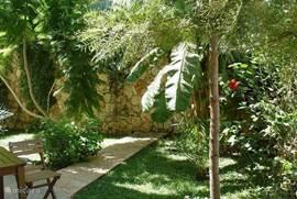 Tuin met heerlijke schaduwrijke plekken