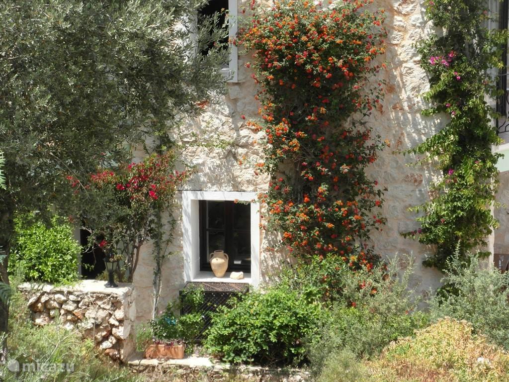Heerlijke mediterrane sfeer rondom het huis