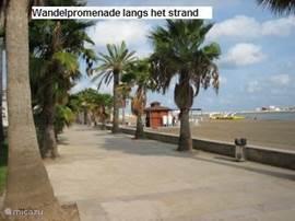 Wandelpromenade langs het strand.