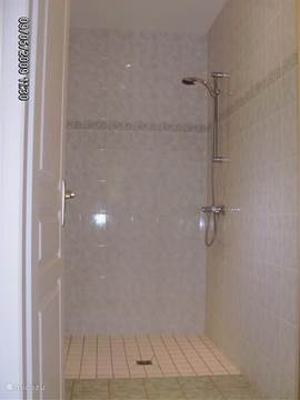 Very large shower with separate toilet.