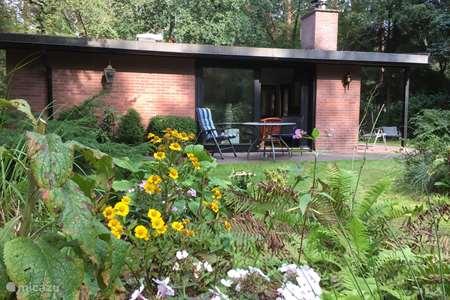 Vakantiehuis Nederland, Overijssel, Ommen - bungalow Bosparel