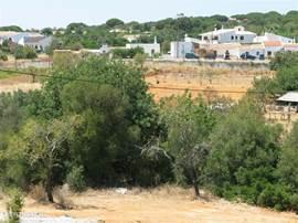 Uitzicht bij Casa Adriana vanaf het terras aan de voorkant.