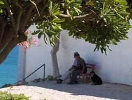 typisch plaatje van een praatje In de Algarve zitten de mensen graag in de schaduw van een boom van het leven te genieten.
