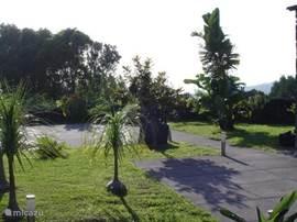 Een stukje tuin