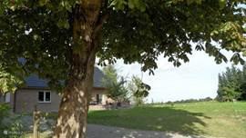 Vanuit de weide blik op ons huis, met mooi kastanjeboom.