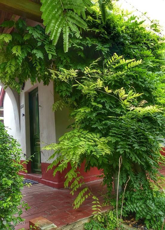 Almahof vooral veel groen en buitenterrassen
