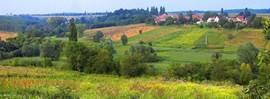 Boldogassonyfa vallei