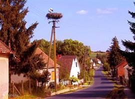 De ooievaar in het dorp