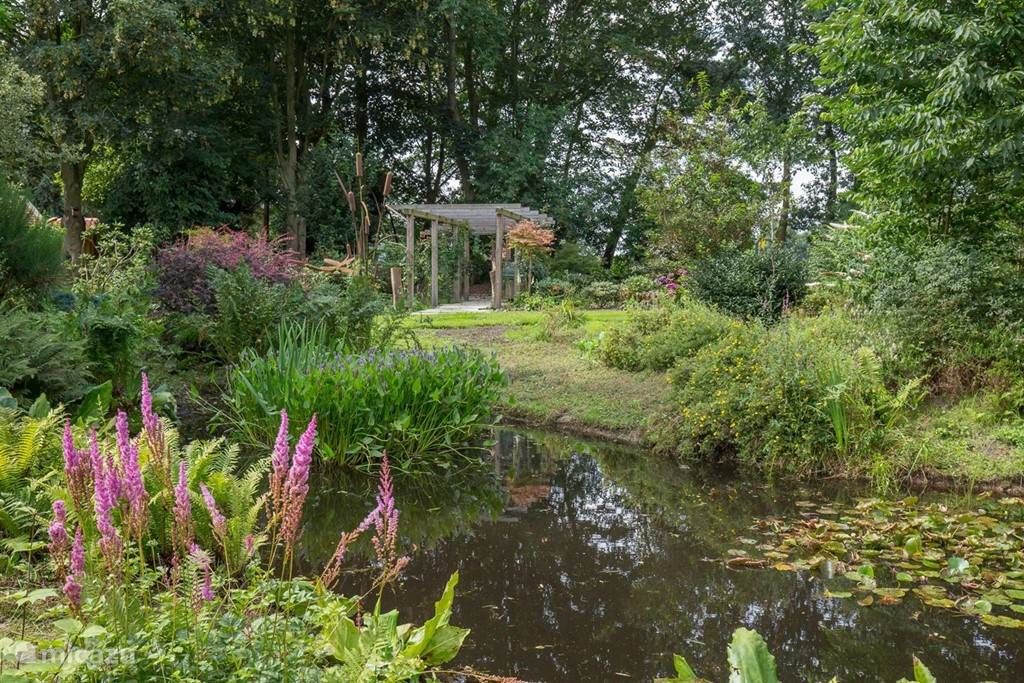 Tuinimpressie met een tuin in volle bloei