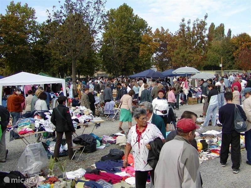 Big market in Pecs