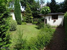 Groene ruime tuin