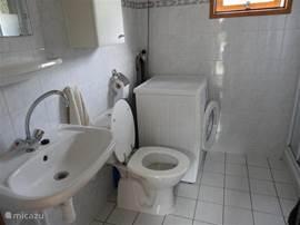 Badkamer met wastafel, douche, toilet en wasmachine.