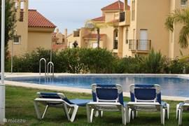 Een van de zwembaden met bijbehorende ligstoelen.