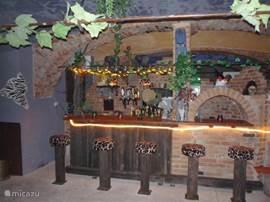 De Junglebar met  karaoke,poolbiljard en darts