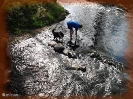 Het riviertje de Blanice ligt op  vijf minuten lopen van ons huis