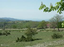 Vanaf de veranda gezien, richting de weg naar Mirabel.