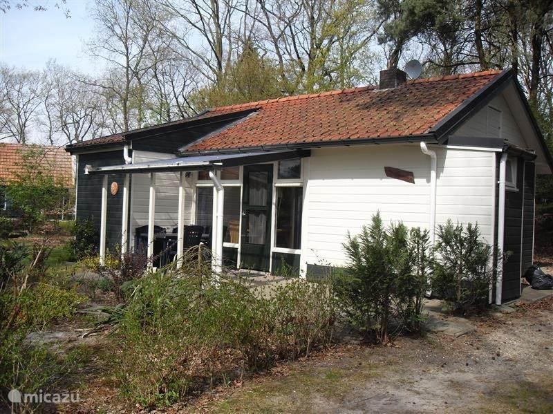 Ferienwohnung Niederlande, Overijssel, Beerze Ferienhaus Rotkehlchen