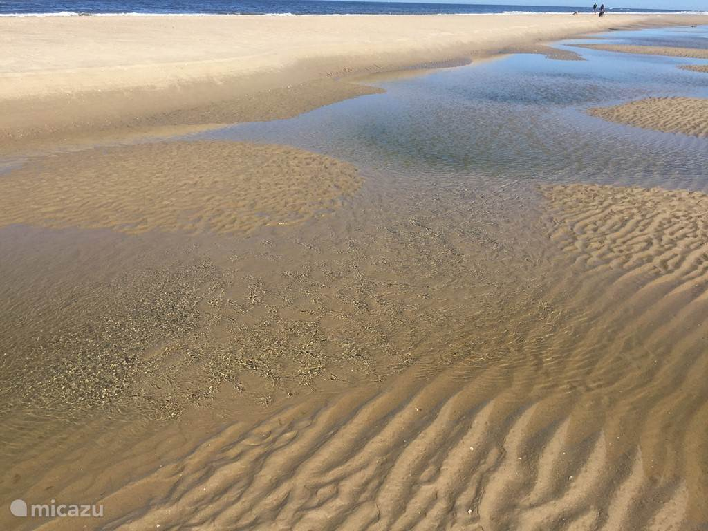 Strand bij Camperduin