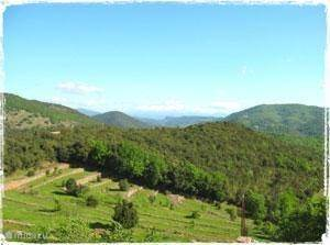 The Cevennes
