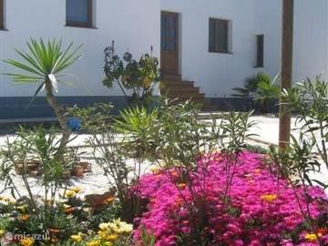 Vakantiehuis Spanje, Andalusië, Coín - vakantiehuis El Sigiloso