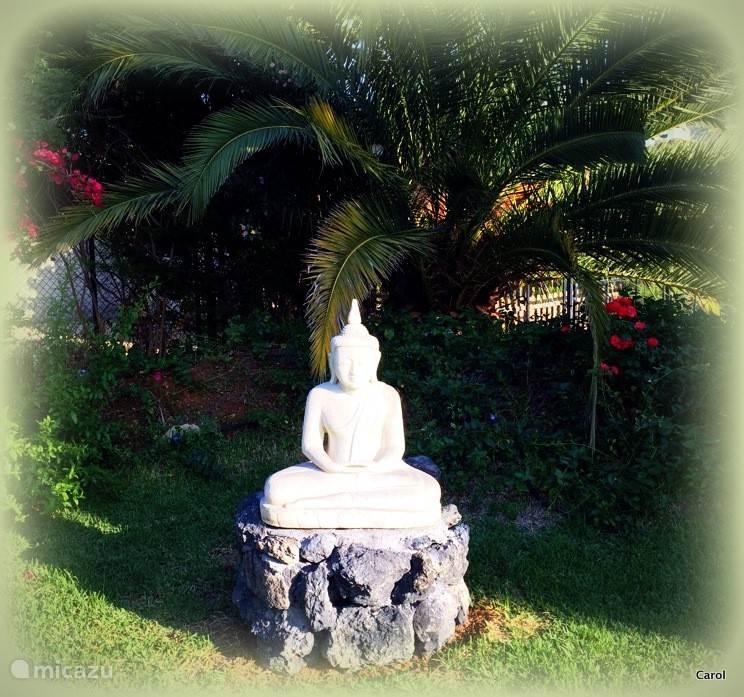 Onze laatste aanwinst, een originele Birmese Budha  achter in de tuin.
